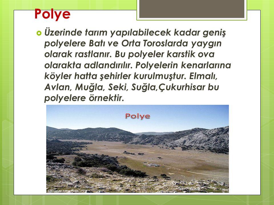 Polye