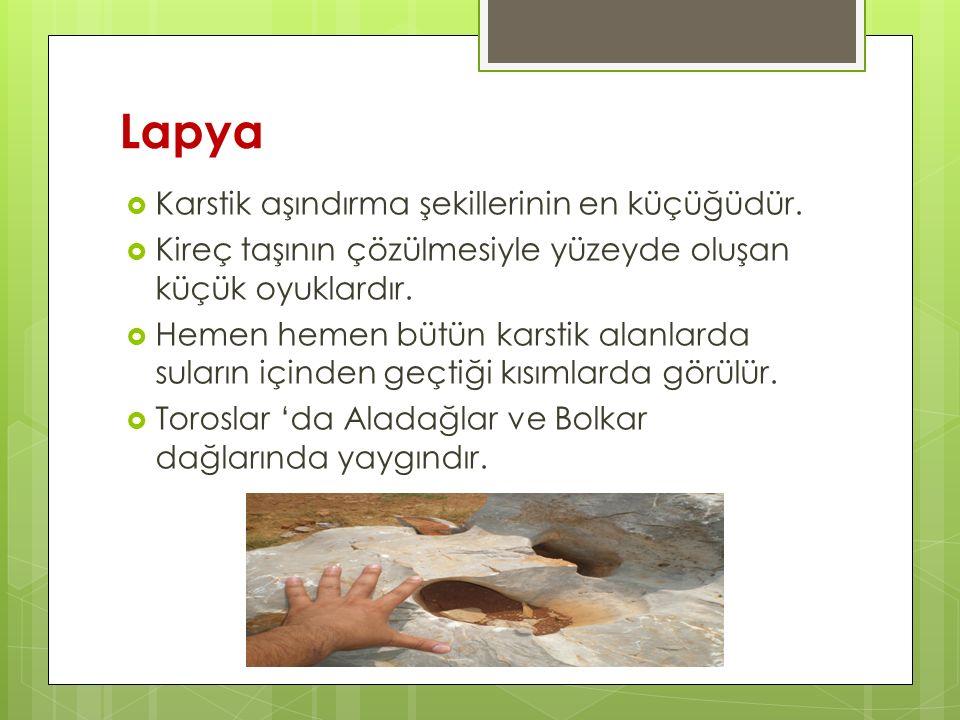 Lapya Karstik aşındırma şekillerinin en küçüğüdür.