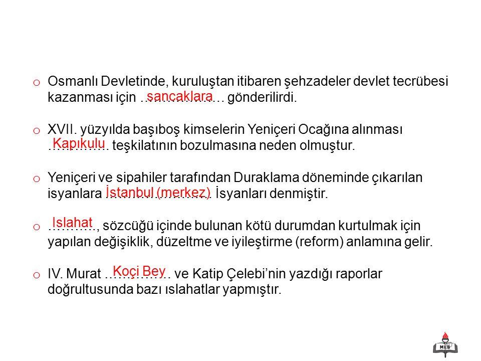 Osmanlı Devletinde, kuruluştan itibaren şehzadeler devlet tecrübesi kazanması için ………………. gönderilirdi.