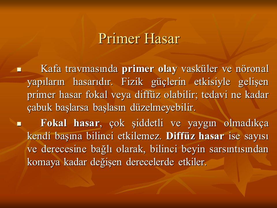 Primer Hasar