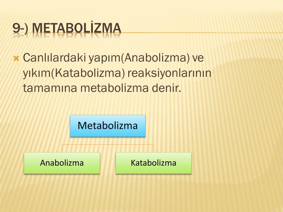 9-) metabolİzma Canlılardaki yapım(Anabolizma) ve yıkım(Katabolizma) reaksiyonlarının tamamına metabolizma denir.