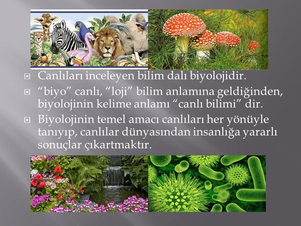 Canlıları inceleyen bilim dalı biyolojidir.