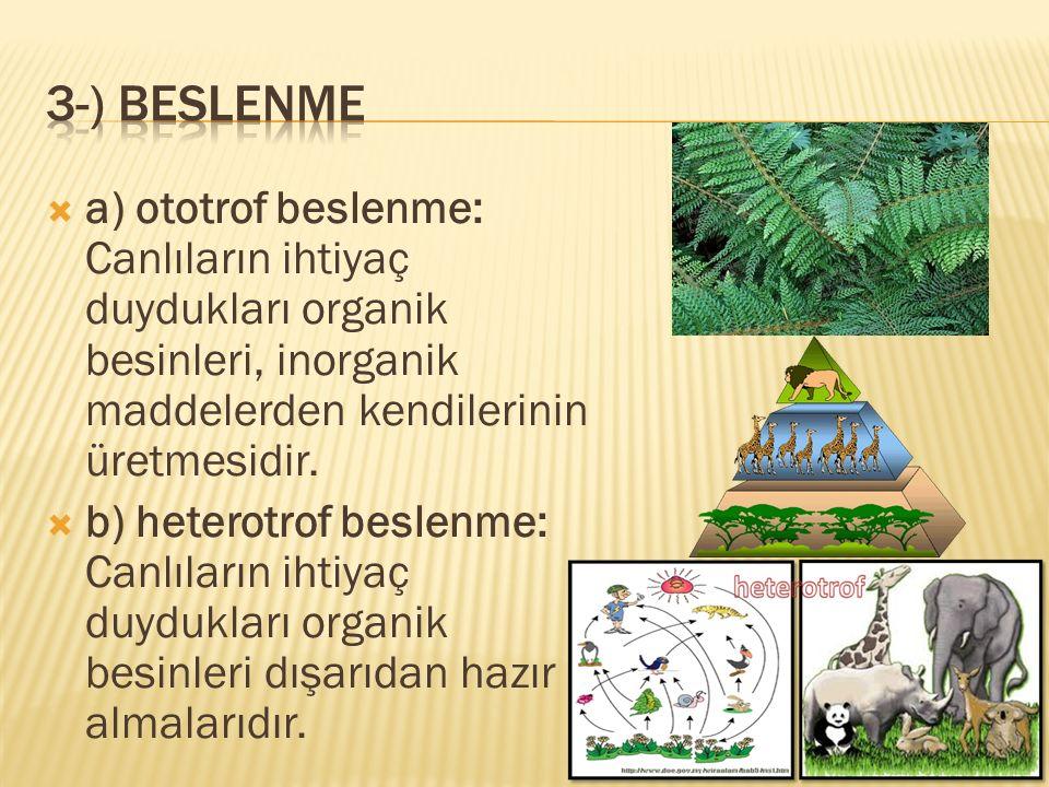 3-) beslenme a) ototrof beslenme: Canlıların ihtiyaç duydukları organik besinleri, inorganik maddelerden kendilerinin üretmesidir.