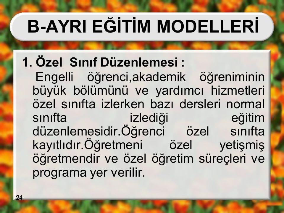 B-AYRI EĞİTİM MODELLERİ
