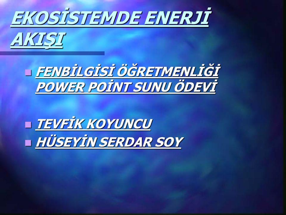 EKOSİSTEMDE ENERJİ AKIŞI