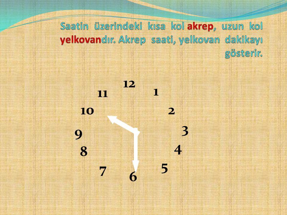 Saatin üzerindeki kısa kol akrep, uzun kol yelkovandır