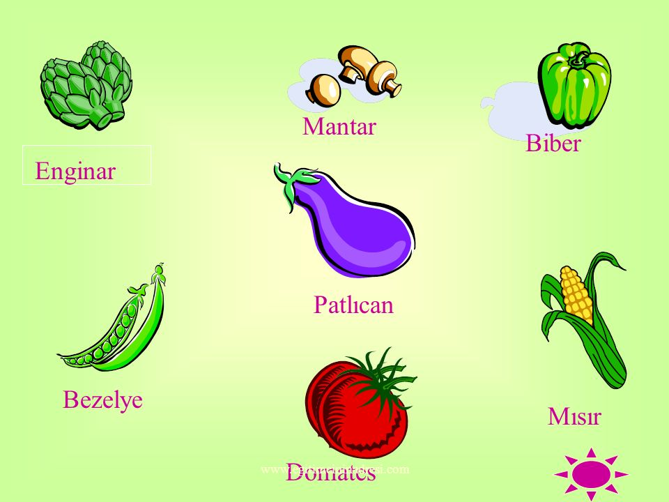 Mantar Biber Enginar Patlıcan Bezelye Mısır Domates
