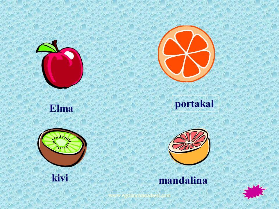 portakal Elma kivi mandalina www.egitimcininadresi.com