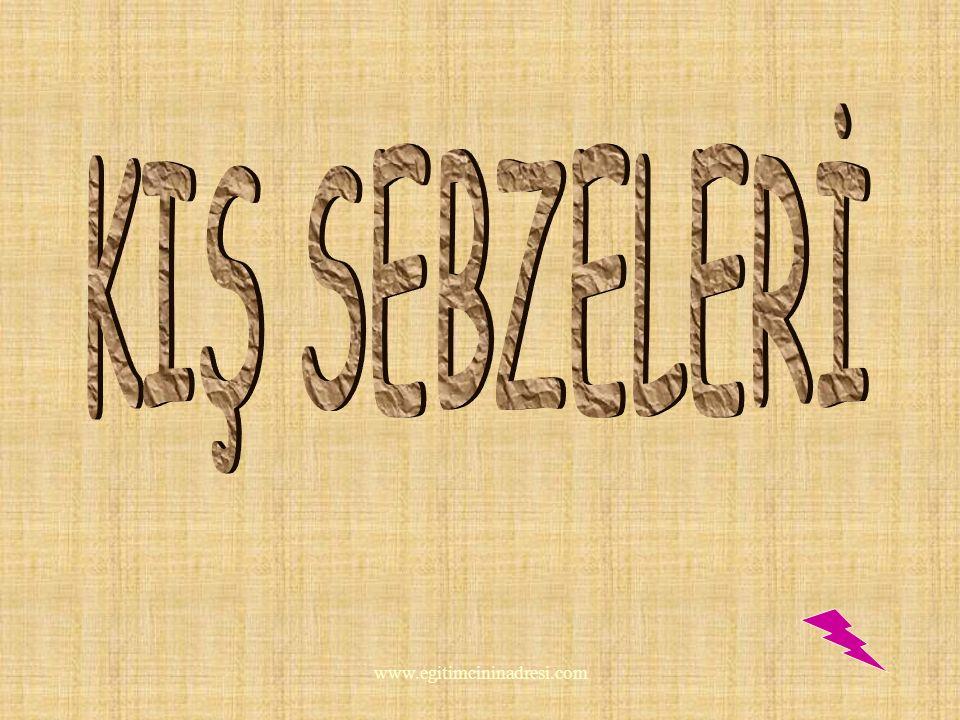 KIŞ SEBZELERİ www.egitimcininadresi.com