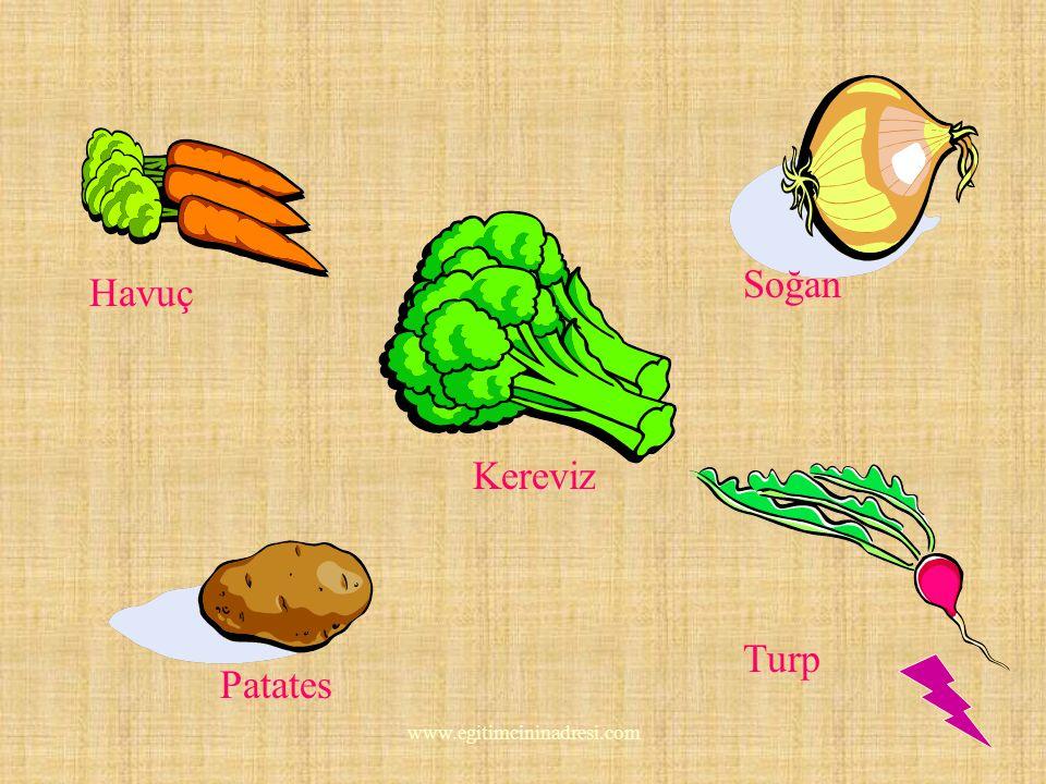 Soğan Havuç Kereviz Turp Patates www.egitimcininadresi.com