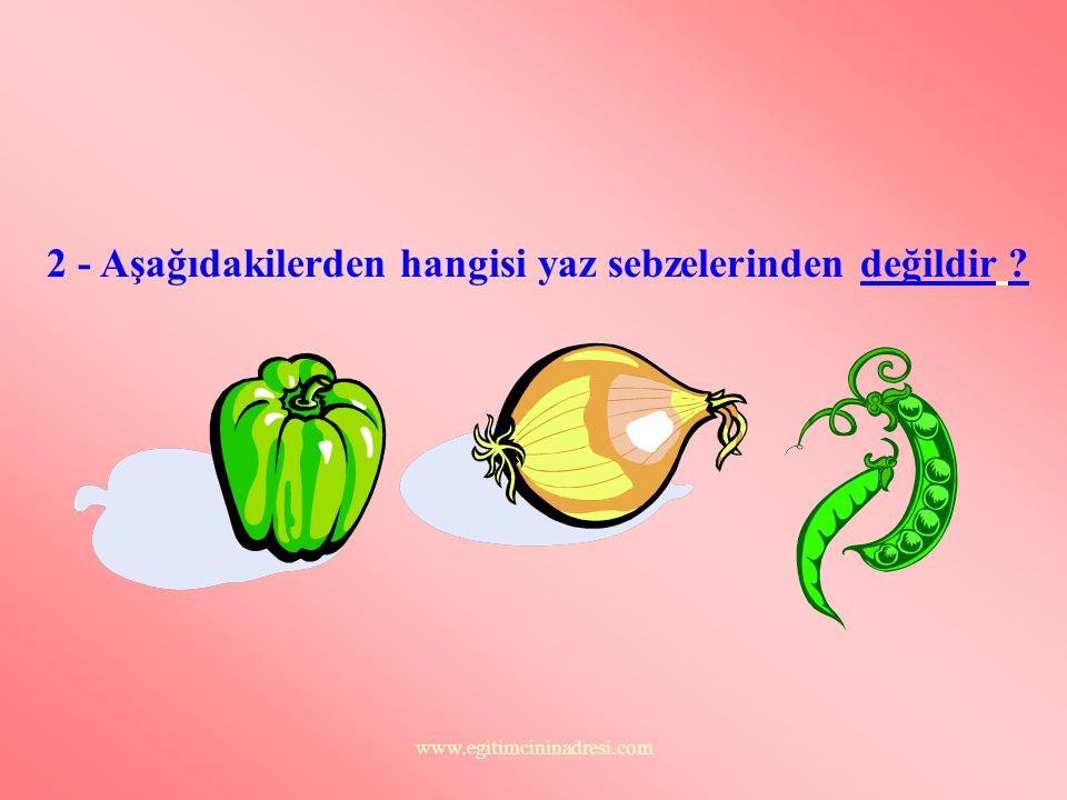 2 - Aşağıdakilerden hangisi yaz sebzelerinden değildir