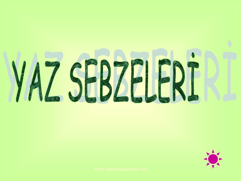 YAZ SEBZELERİ www.egitimcininadresi.com