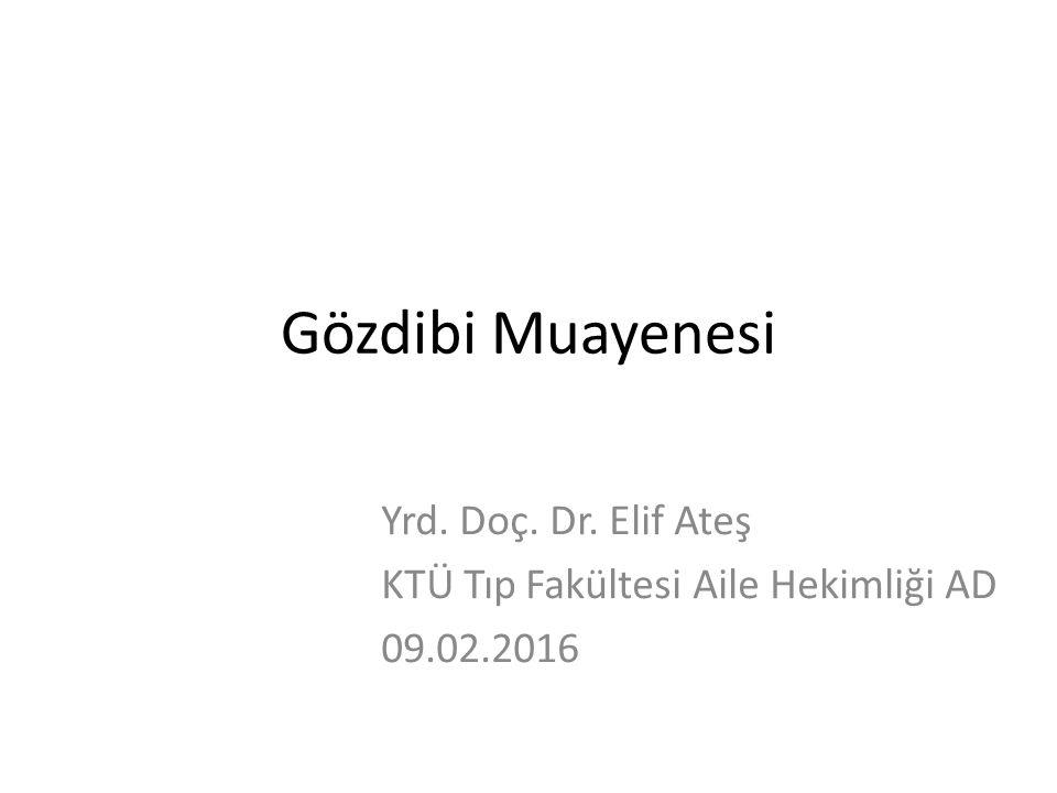 Yrd. Doç. Dr. Elif Ateş KTÜ Tıp Fakültesi Aile Hekimliği AD 09.02.2016