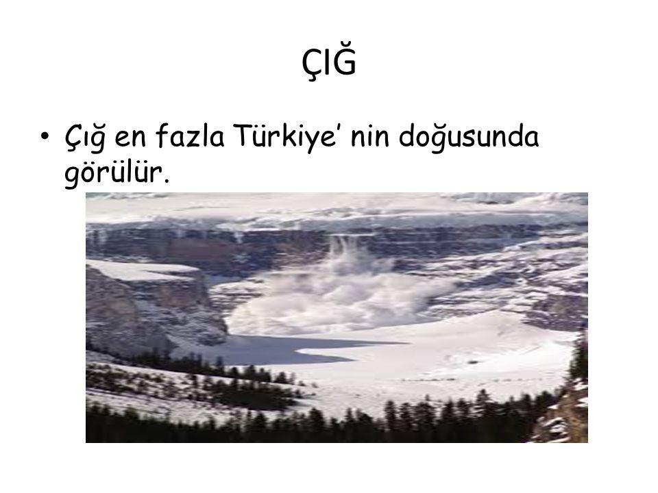 ÇIĞ Çığ en fazla Türkiye' nin doğusunda görülür.