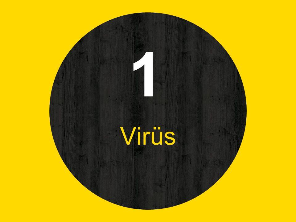 1 Virüs