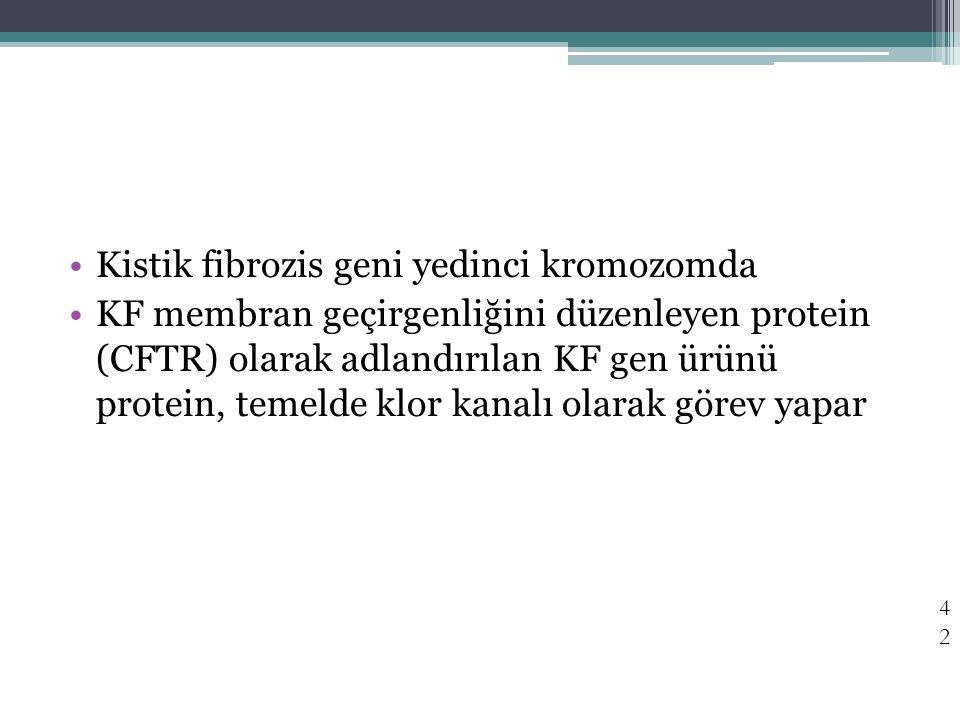 Kistik fibrozis geni yedinci kromozomda