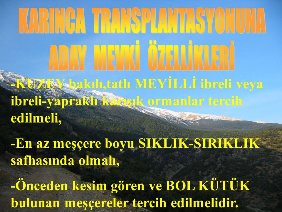 KARINCA TRANSPLANTASYONUNA ADAY MEVKİ ÖZELLİKLERİ