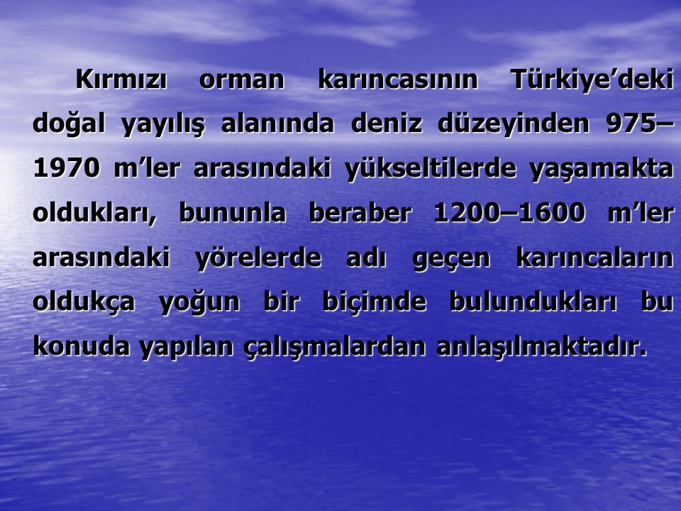 Kırmızı orman karıncasının Türkiye'deki doğal yayılış alanında deniz düzeyinden 975–1970 m'ler arasındaki yükseltilerde yaşamakta oldukları, bununla beraber 1200–1600 m'ler arasındaki yörelerde adı geçen karıncaların oldukça yoğun bir biçimde bulundukları bu konuda yapılan çalışmalardan anlaşılmaktadır.