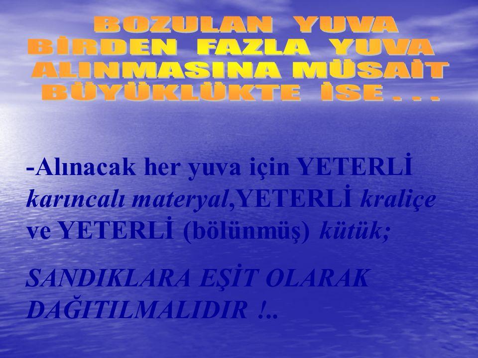 SANDIKLARA EŞİT OLARAK DAĞITILMALIDIR !..