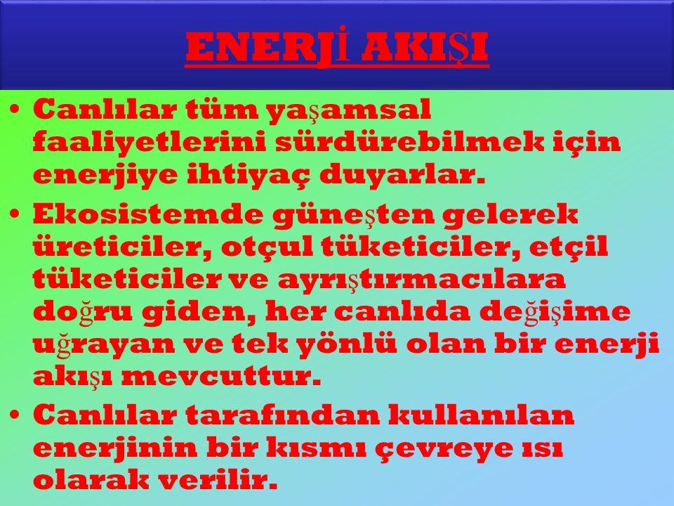 ENERJİ AKIŞI Canlılar tüm yaşamsal faaliyetlerini sürdürebilmek için enerjiye ihtiyaç duyarlar.