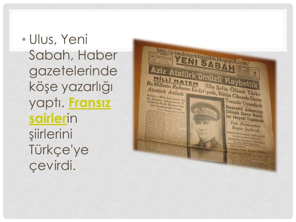 Ulus, Yeni Sabah, Haber gazetelerinde köşe yazarlığı yaptı