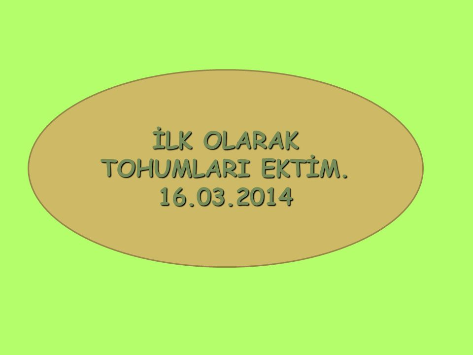 İLK OLARAK TOHUMLARI EKTİM. 16.03.2014