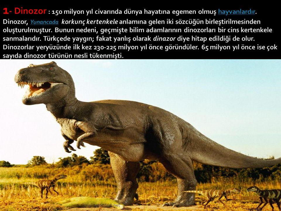 1- Dinozor : 150 milyon yıl civarında dünya hayatına egemen olmuş hayvanlardır. Dinozor, Yunancada korkunç kertenkele anlamına gelen iki sözcüğün birleştirilmesinden oluşturulmuştur. Bunun nedeni, geçmişte bilim adamlarının dinozorları bir cins kertenkele sanmalarıdır. Türkçede yaygın; fakat yanlış olarak dinazor diye hitap edildiği de olur. Dinozorlar yeryüzünde ilk kez 230-225 milyon yıl önce göründüler. 65 milyon yıl önce ise çok sayıda dinozor türünün nesli tükenmişti.