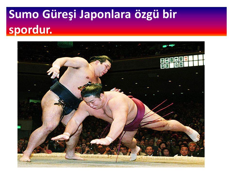 Sumo Güreşi Japonlara özgü bir spordur.