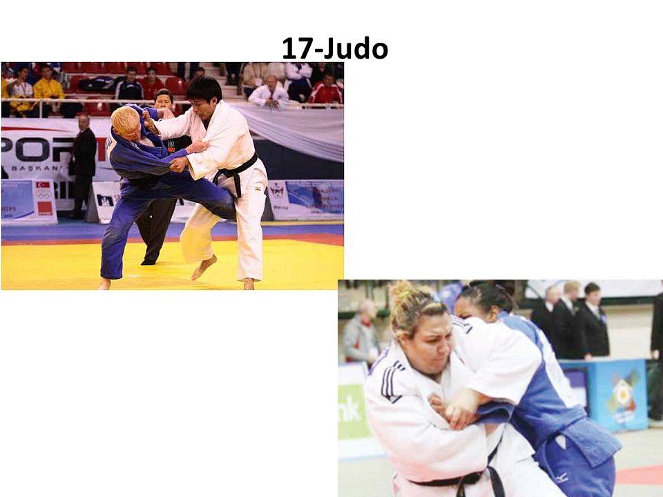 17-Judo