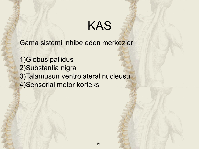 KAS Gama sistemi inhibe eden merkezler: Globus pallidus
