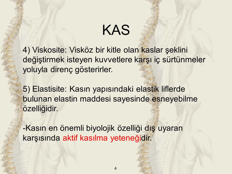 KAS 4) Viskosite: Visköz bir kitle olan kaslar şeklini değiştirmek isteyen kuvvetlere karşı iç sürtünmeler yoluyla direnç gösterirler.