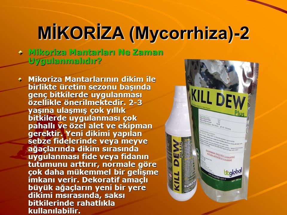 MİKORİZA (Mycorrhiza)-2