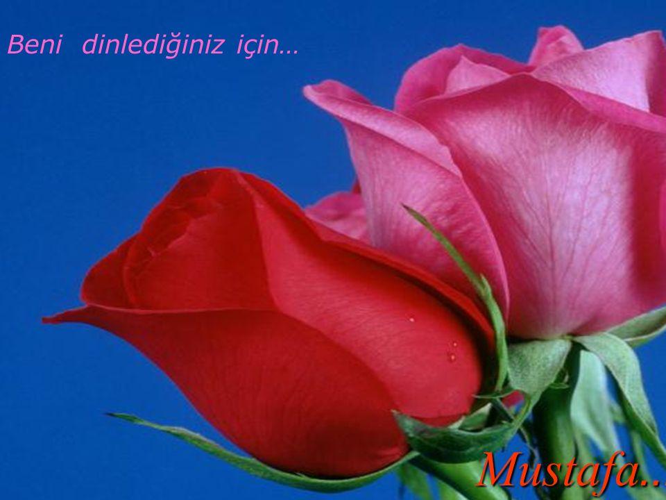 Mustafa… Beni dinlediğiniz için… hhhhhhhhh Jfgvbflfvh fadvg v