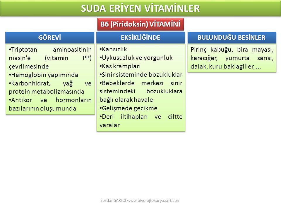 SUDA ERİYEN VİTAMİNLER B6 (Piridoksin) VİTAMİNİ