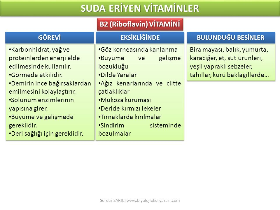 SUDA ERİYEN VİTAMİNLER B2 (Riboflavin) VİTAMİNİ