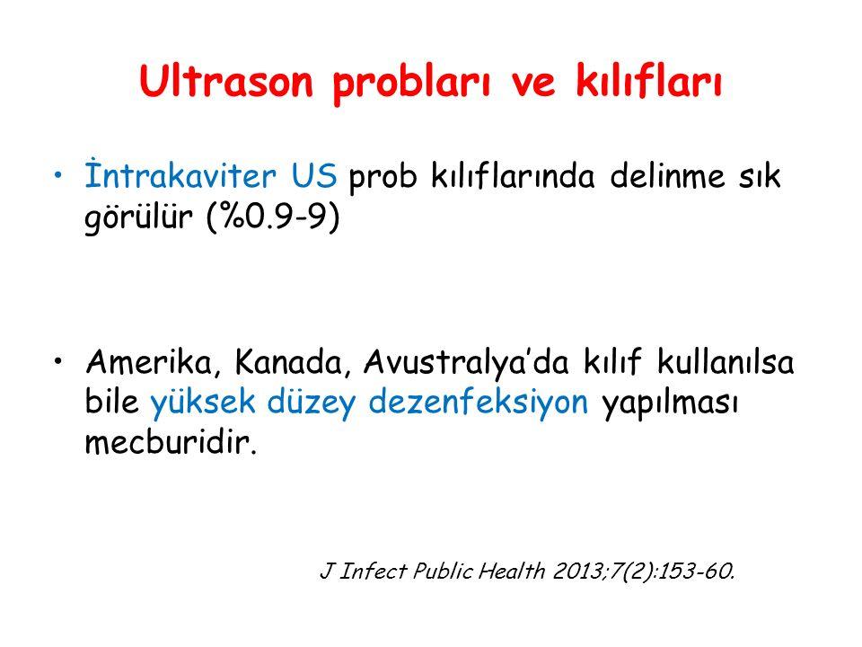 Ultrason probları ve kılıfları