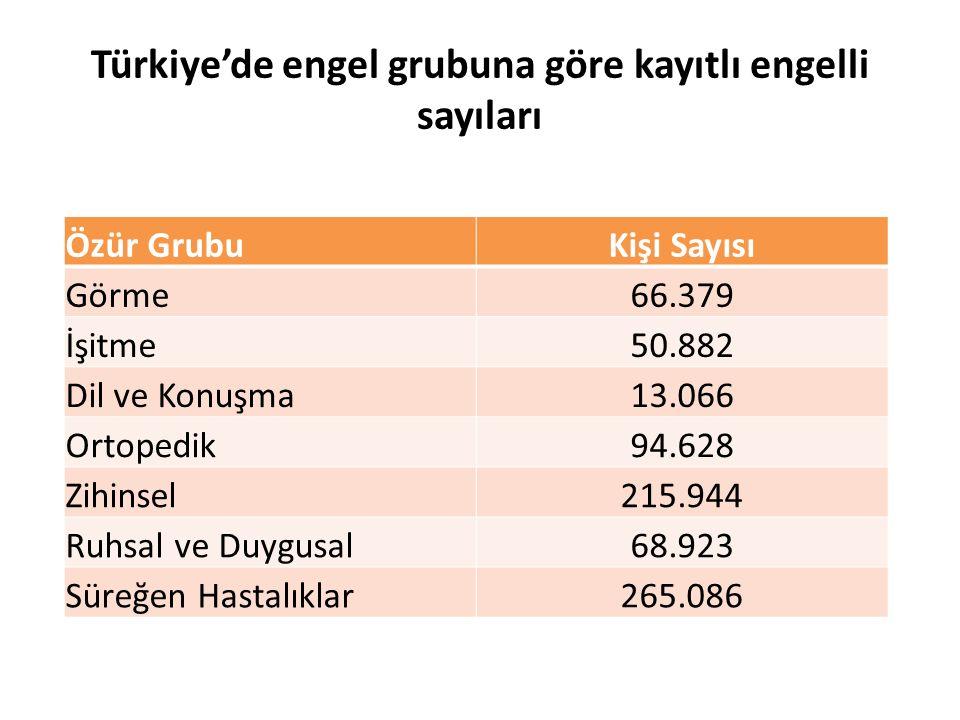 Türkiye'de engel grubuna göre kayıtlı engelli sayıları