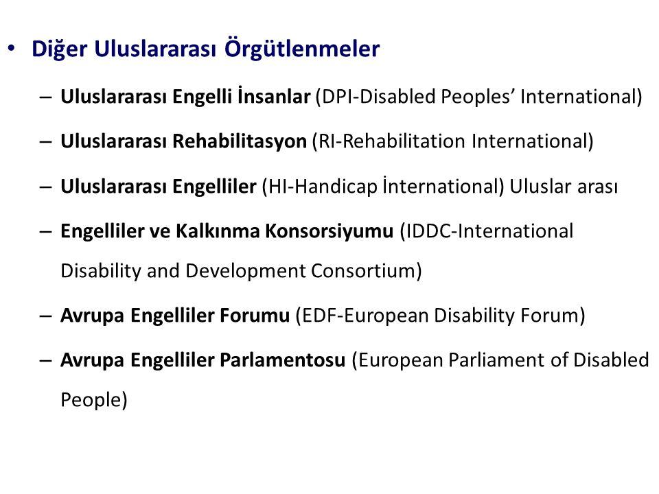 Diğer Uluslararası Örgütlenmeler