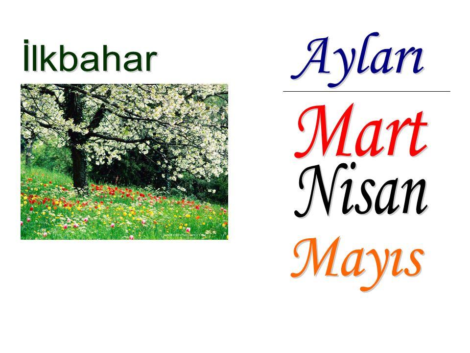 Ayları İlkbahar Mart Nisan Mayıs