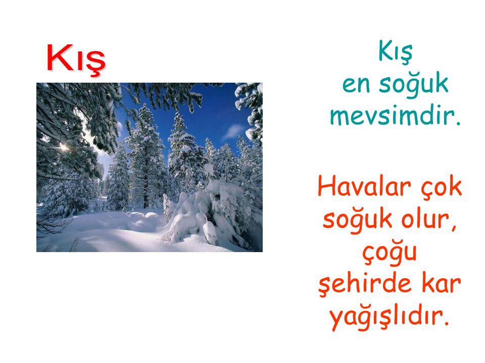 Havalar çok soğuk olur, çoğu şehirde kar yağışlıdır.