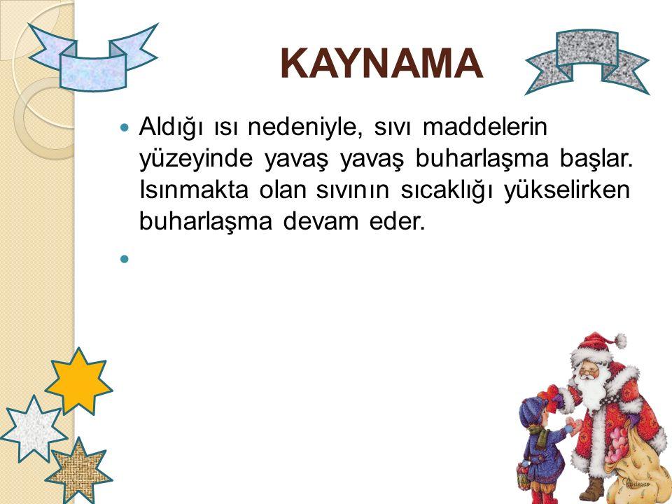 KAYNAMA