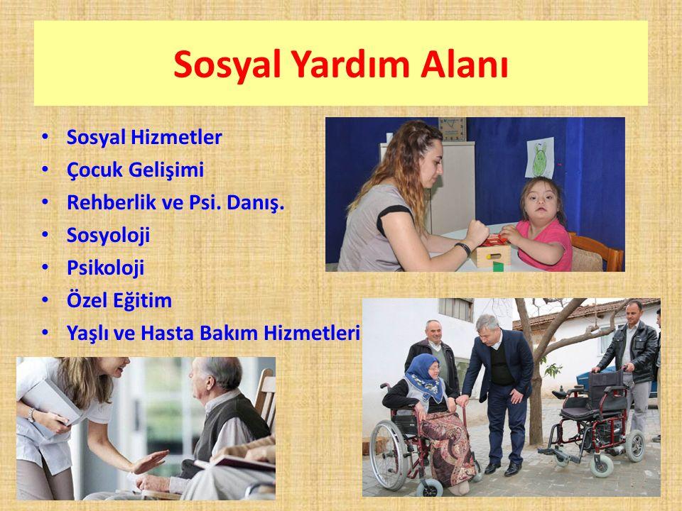 Sosyal Yardım Alanı Sosyal Hizmetler Çocuk Gelişimi
