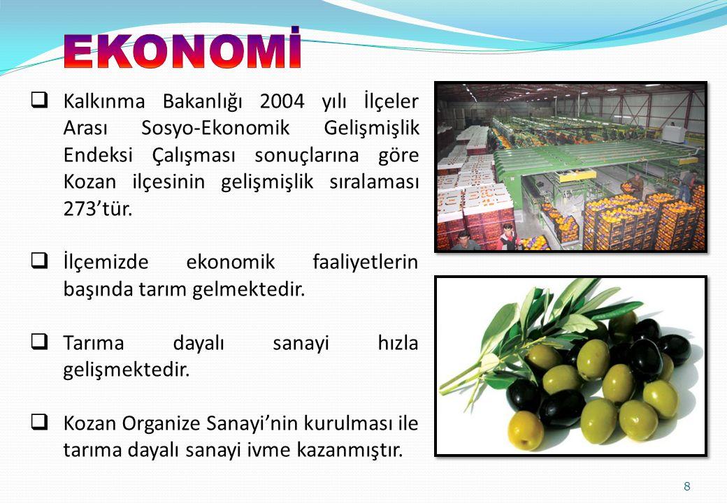 İlçemizde ekonomik faaliyetlerin başında tarım gelmektedir.