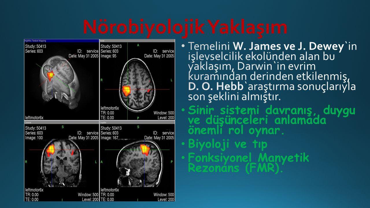 Nörobiyolojik Yaklaşım