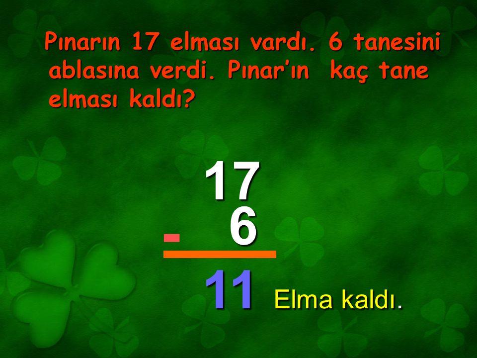 Pınarın 17 elması vardı. 6 tanesini ablasına verdi