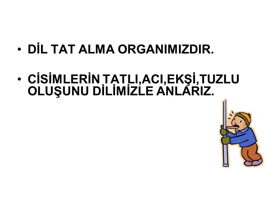 DİL TAT ALMA ORGANIMIZDIR.