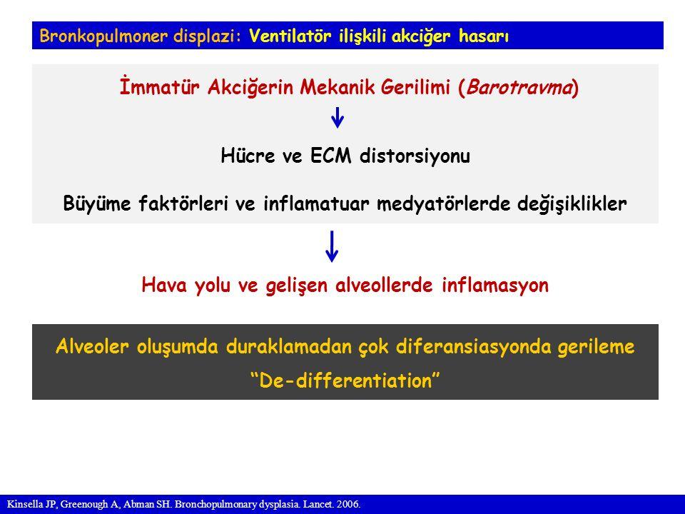 İmmatür Akciğerin Mekanik Gerilimi (Barotravma)