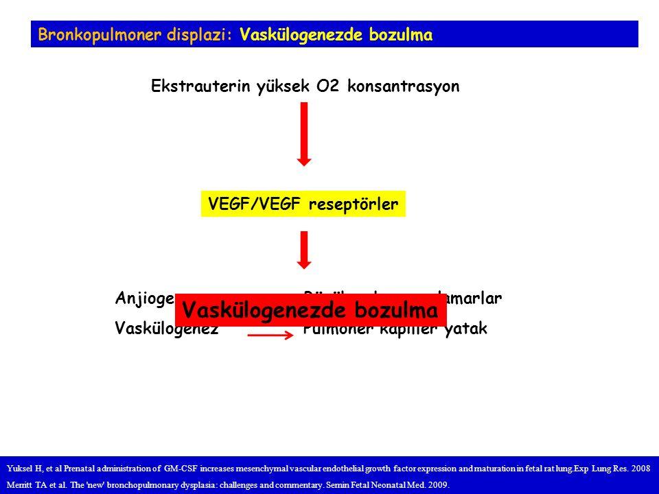 VEGF/VEGF reseptörler