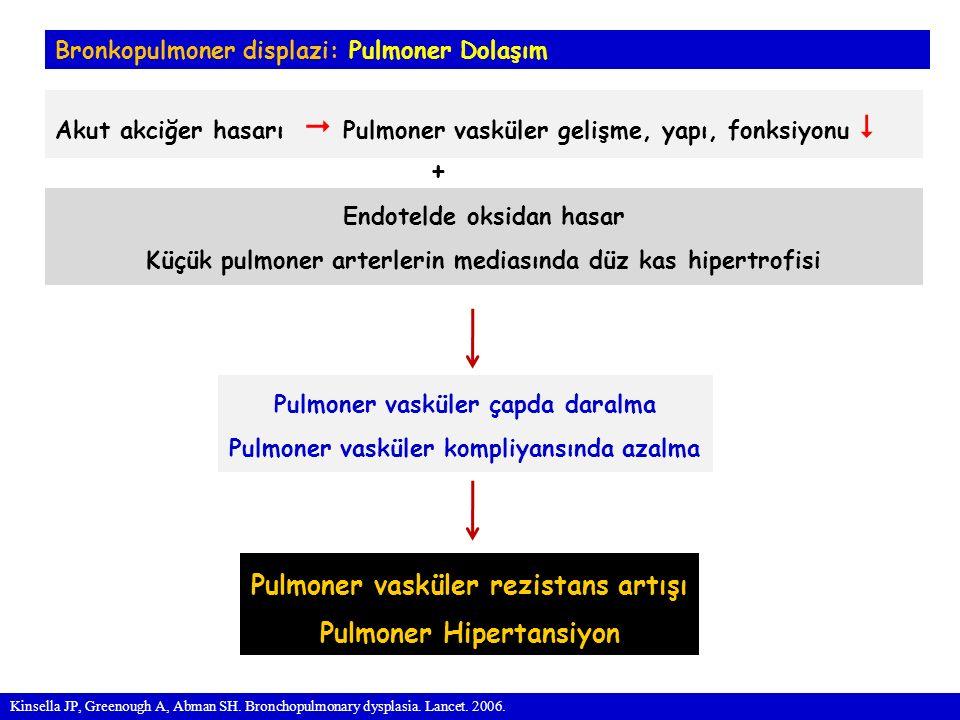 Pulmoner vasküler rezistans artışı Pulmoner Hipertansiyon