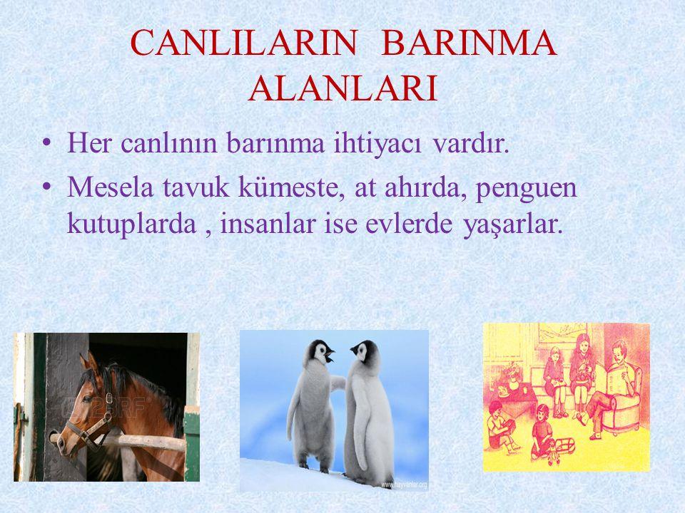 CANLILARIN BARINMA ALANLARI